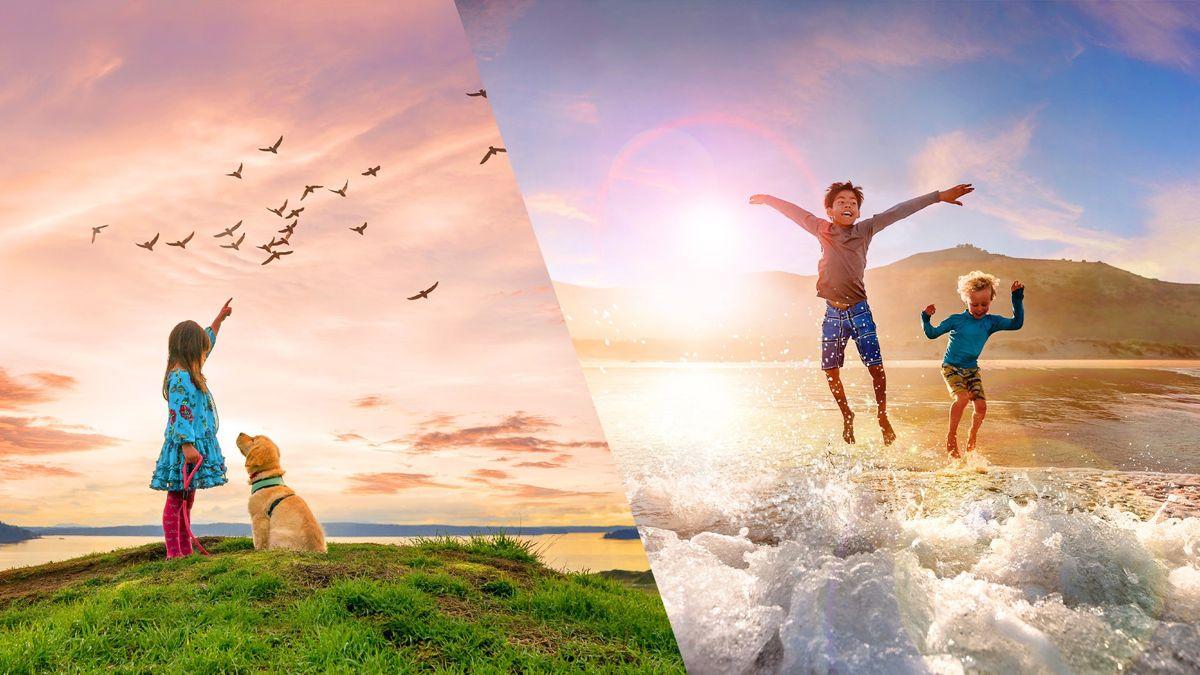 الإعلان رسميًا عن Adobe Photoshop Elements 2021